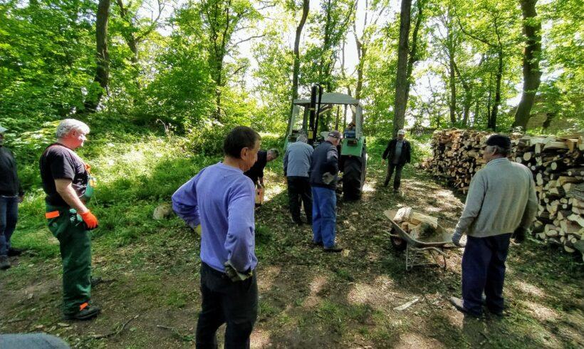 Holzaktion für unser Lingmannhaus